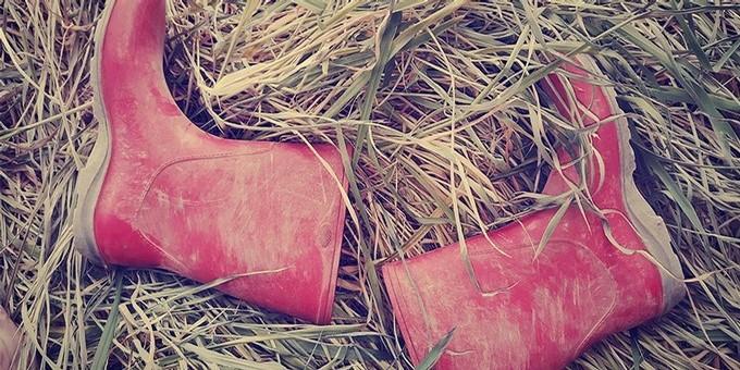 RootsandWingsDistillery-Boots